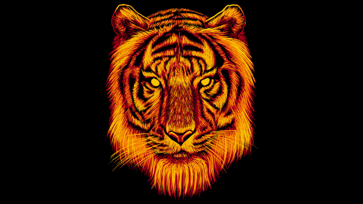 Tiger T Shirt Design